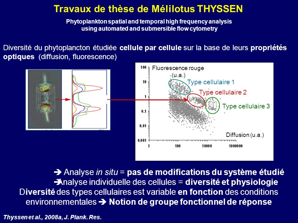Travaux de thèse de Mélilotus THYSSEN