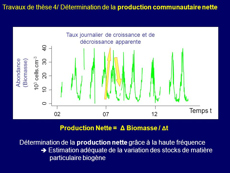 Production Nette = Δ Biomasse / Δt