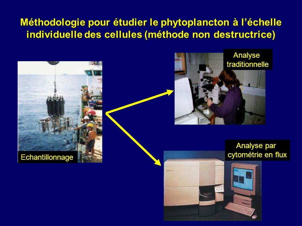 Méthodologie pour étudier le phytoplancton à l'échelle individuelle des cellules (méthode non destructrice)