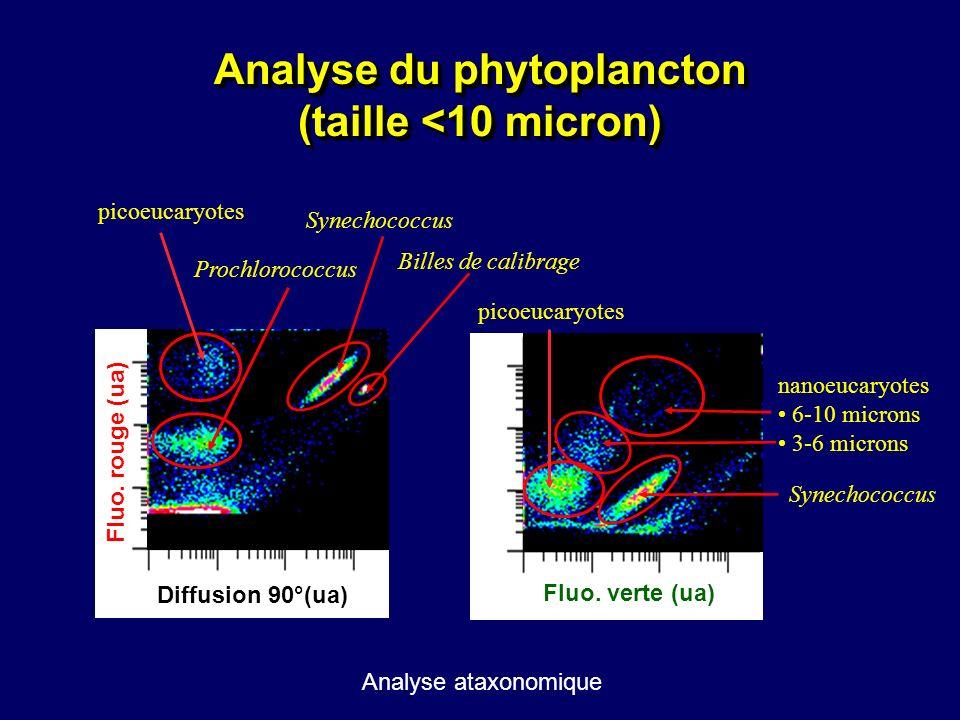 Analyse du phytoplancton (taille <10 micron)