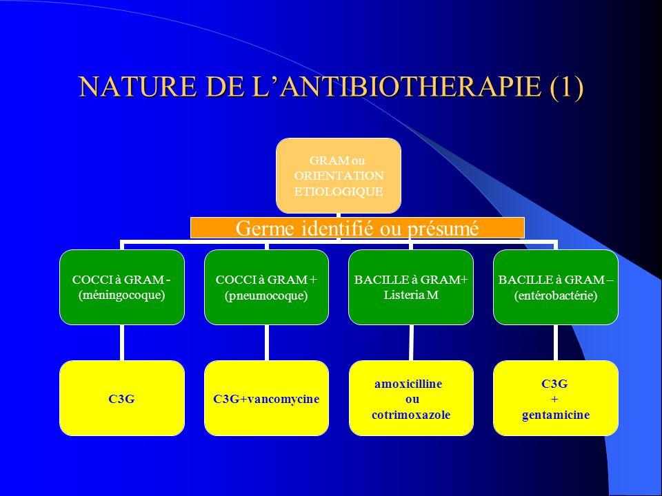 NATURE DE L'ANTIBIOTHERAPIE (1)