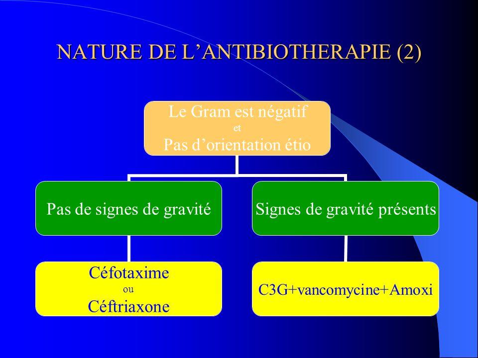NATURE DE L'ANTIBIOTHERAPIE (2)