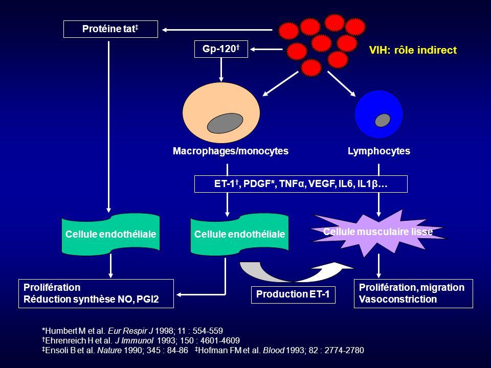 ET-1†, PDGF*, TNFα, VEGF, IL6, IL1β… Cellule musculaire lisse