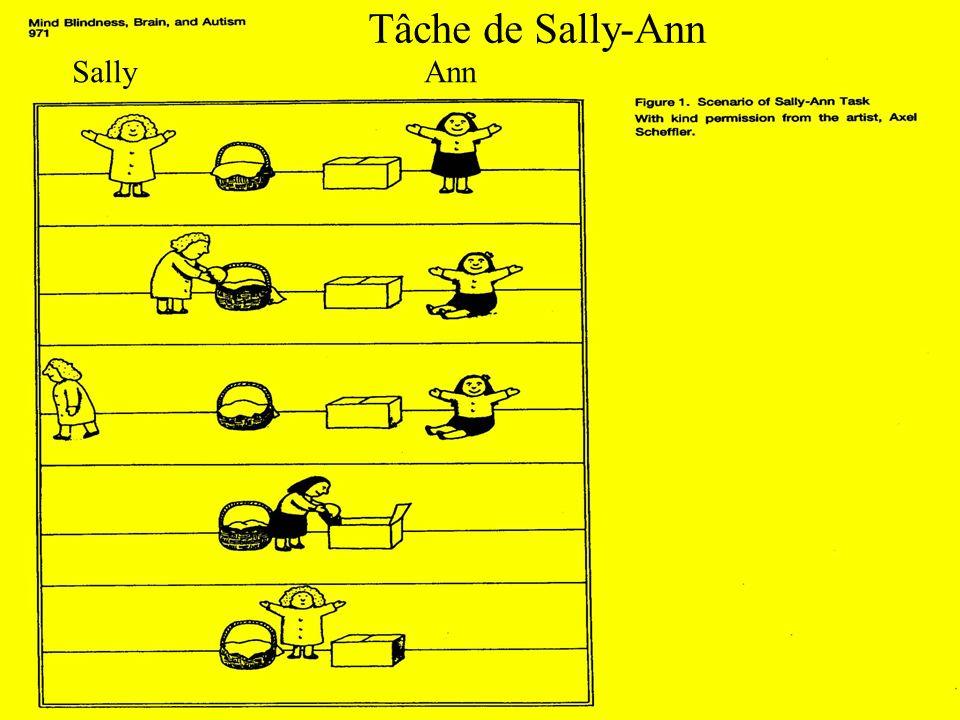 Tâche de Sally-Ann Sally Ann