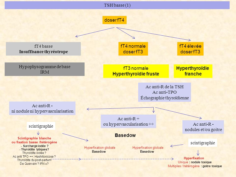Insuffisance thyréotrope fT4 normale doser fT3 fT4 élevée doser fT3