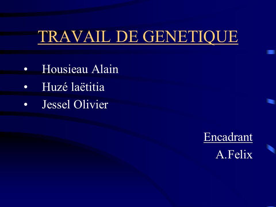 TRAVAIL DE GENETIQUE Housieau Alain Huzé laëtitia Jessel Olivier