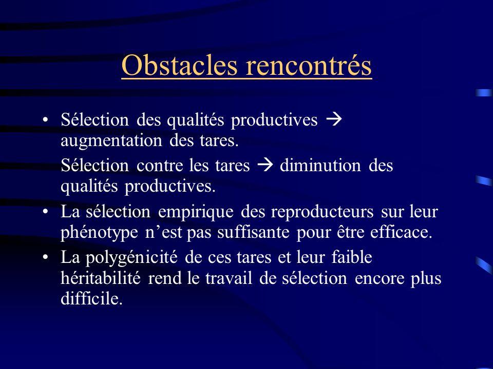 Obstacles rencontrés Sélection des qualités productives  augmentation des tares. Sélection contre les tares  diminution des qualités productives.