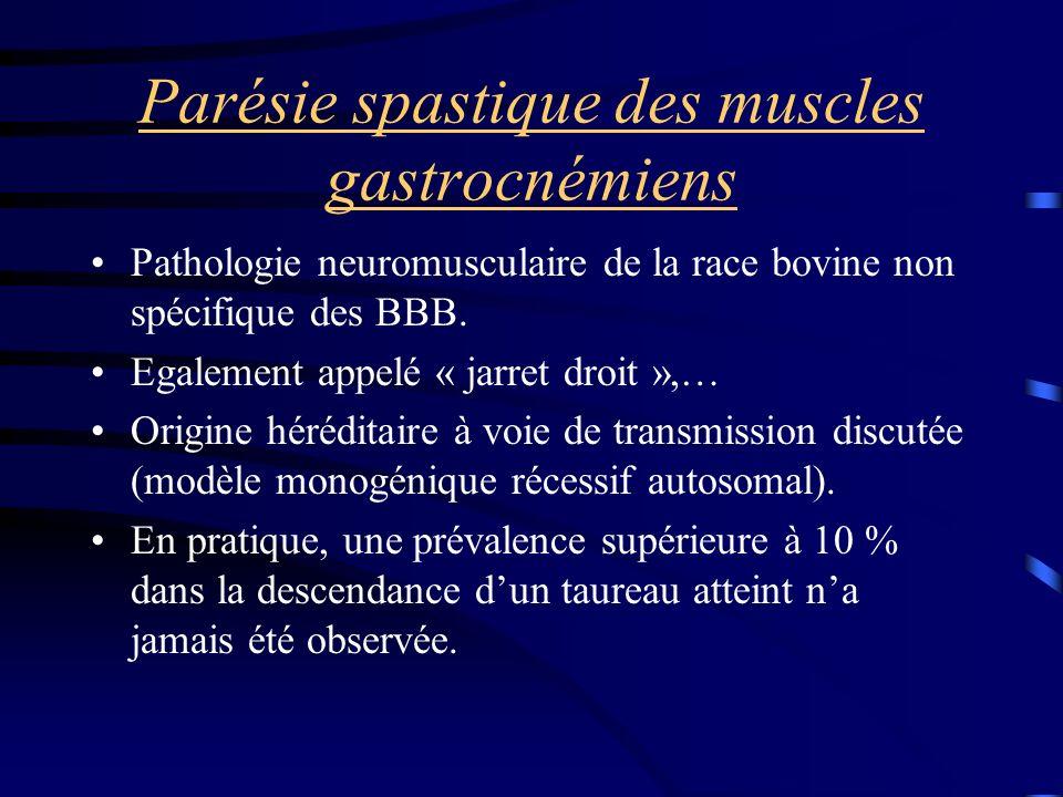 Parésie spastique des muscles gastrocnémiens