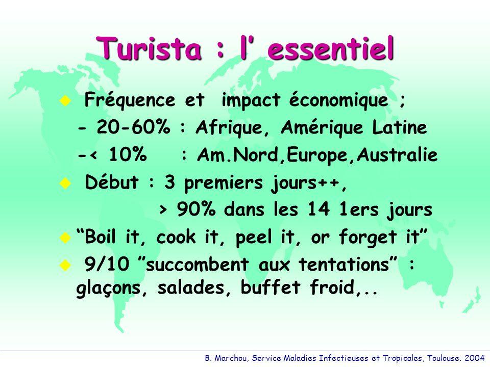 Turista : l' essentiel Fréquence et impact économique ;
