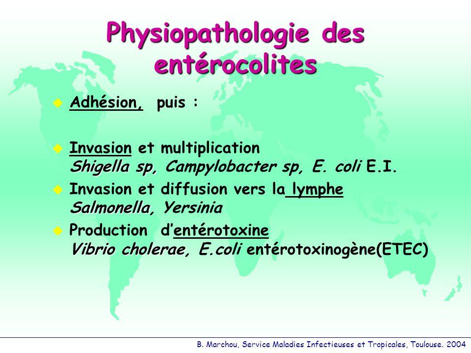 Physiopathologie des entérocolites