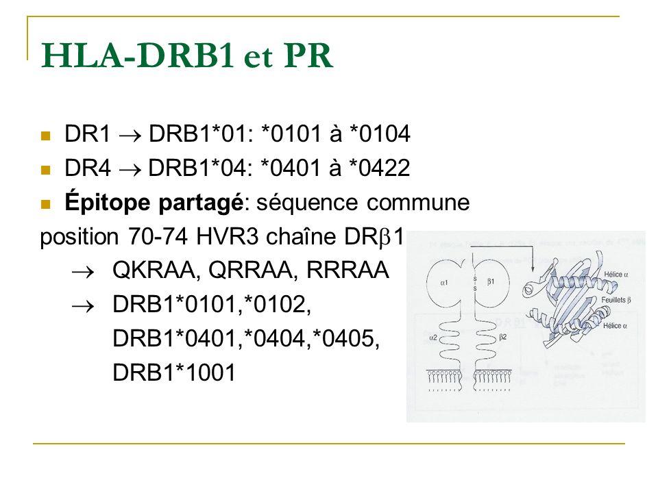 HLA-DRB1 et PR DR1 ® DRB1*01: *0101 à *0104