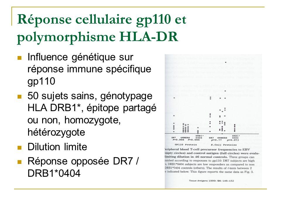 Réponse cellulaire gp110 et polymorphisme HLA-DR