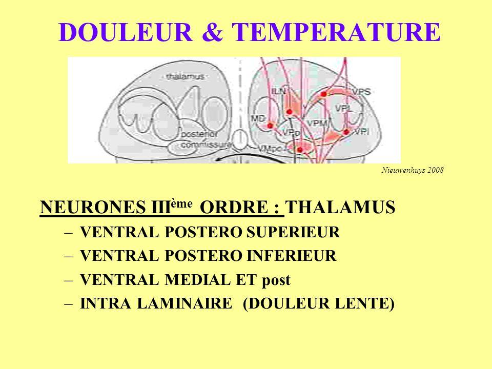 DOULEUR & TEMPERATURE NEURONES IIIème ORDRE : THALAMUS