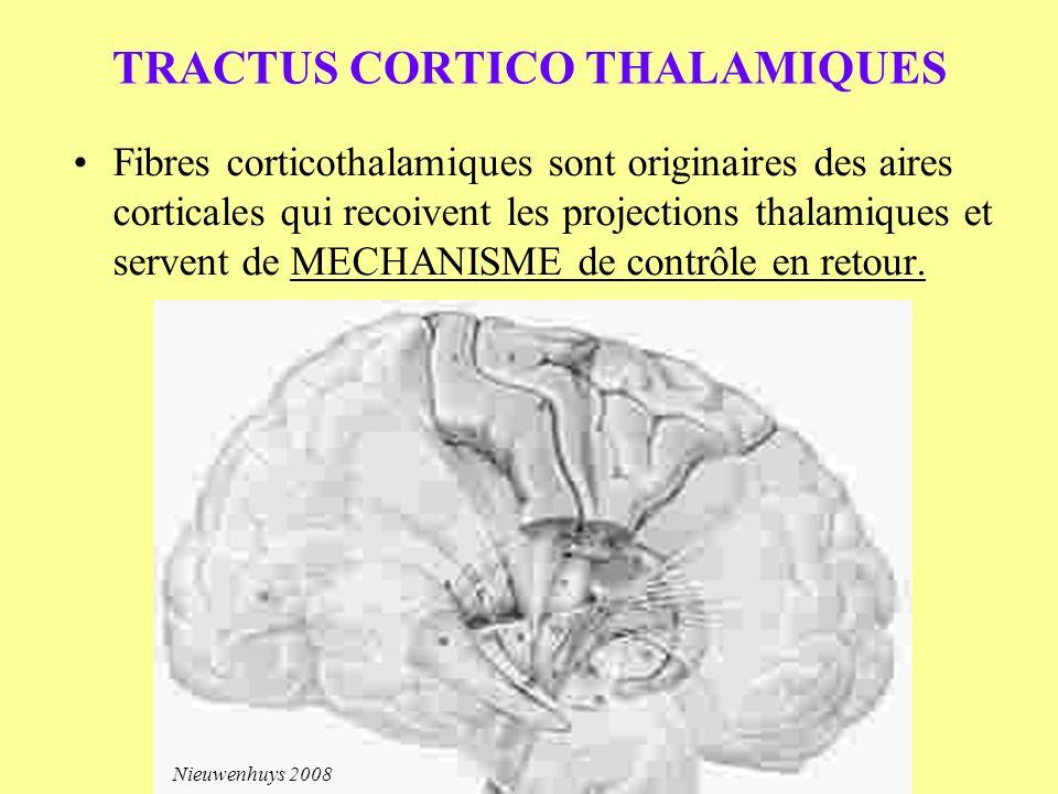 TRACTUS CORTICO THALAMIQUES