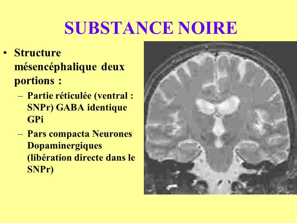 SUBSTANCE NOIRE Structure mésencéphalique deux portions :