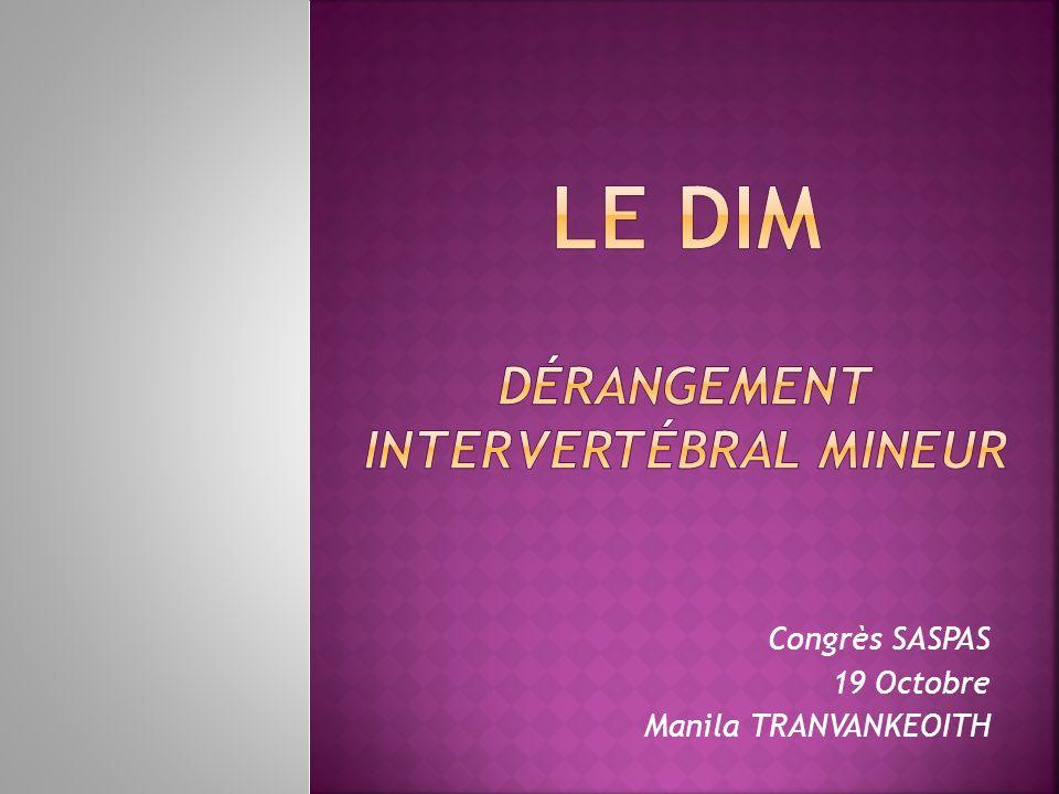 Le DIM Dérangement Intervertébral Mineur