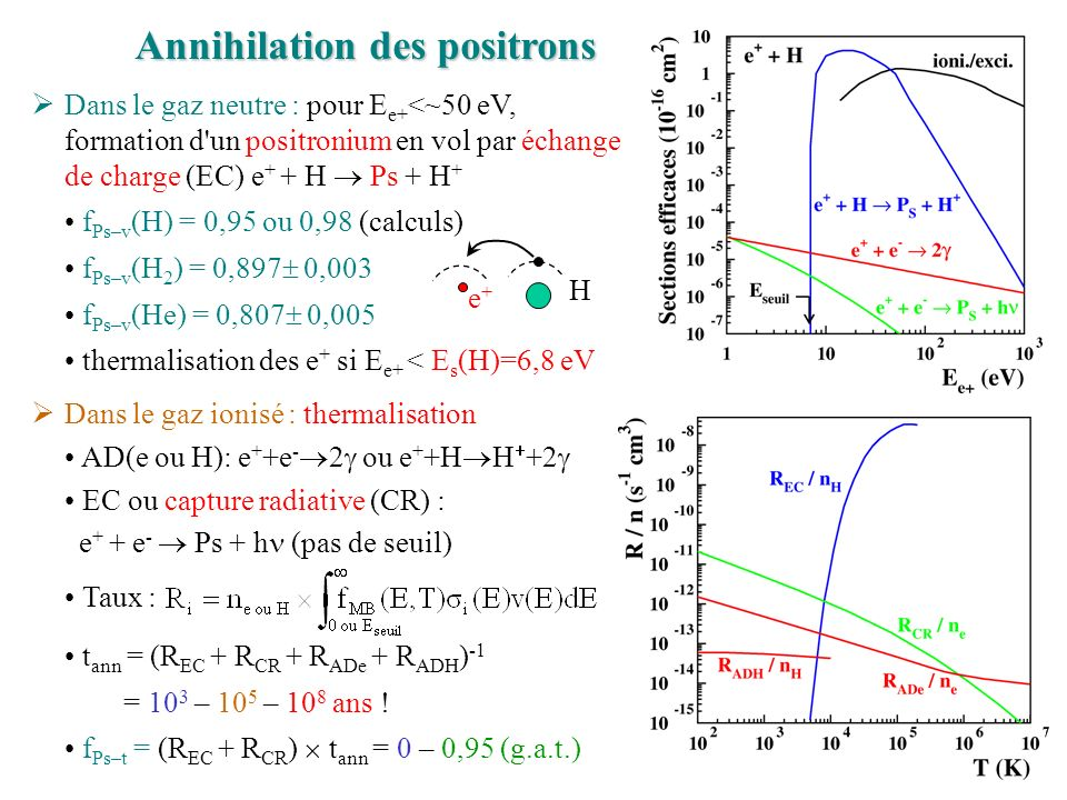 Annihilation des positrons