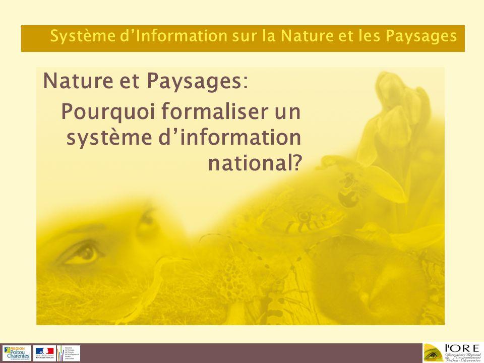 Pourquoi formaliser un système d'information national