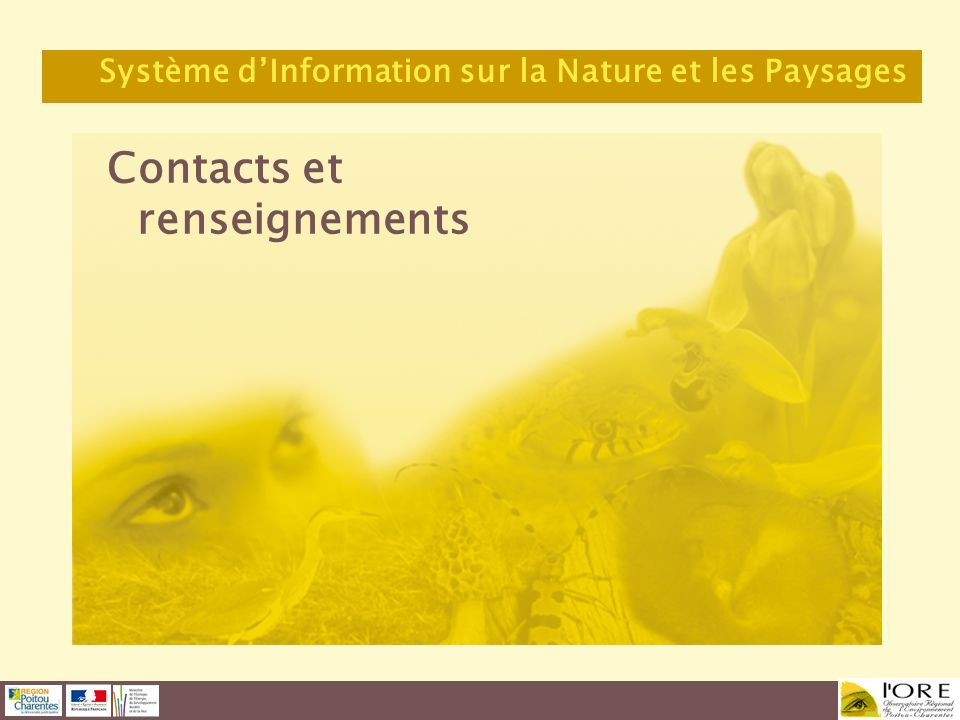 Contacts et renseignements