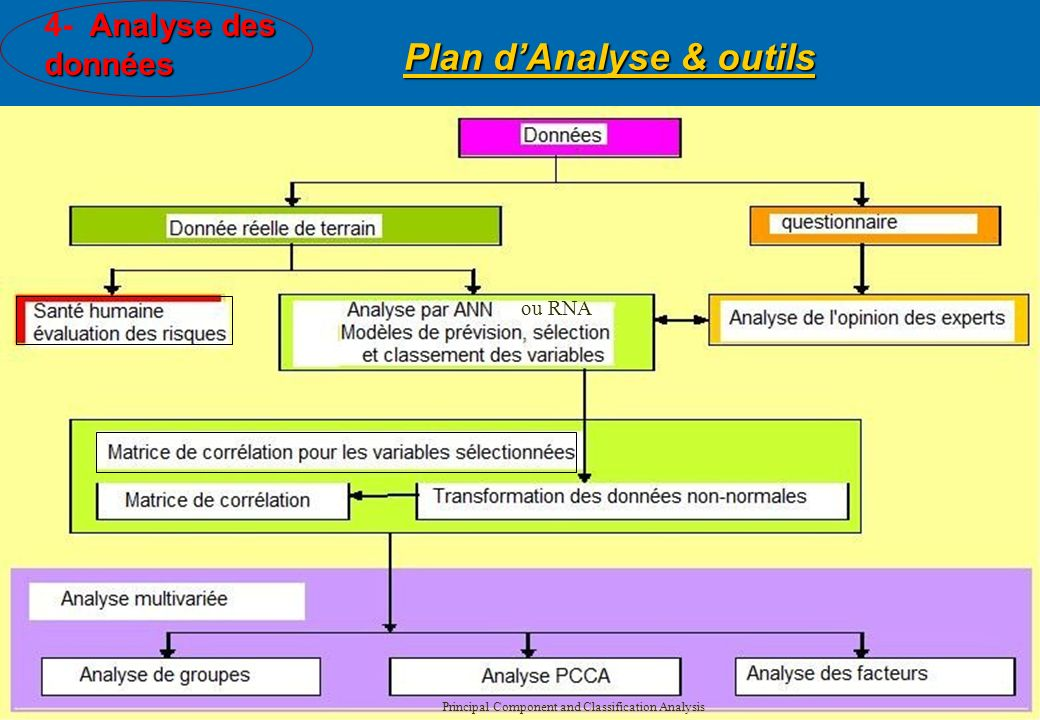 Plan d'Analyse & outils