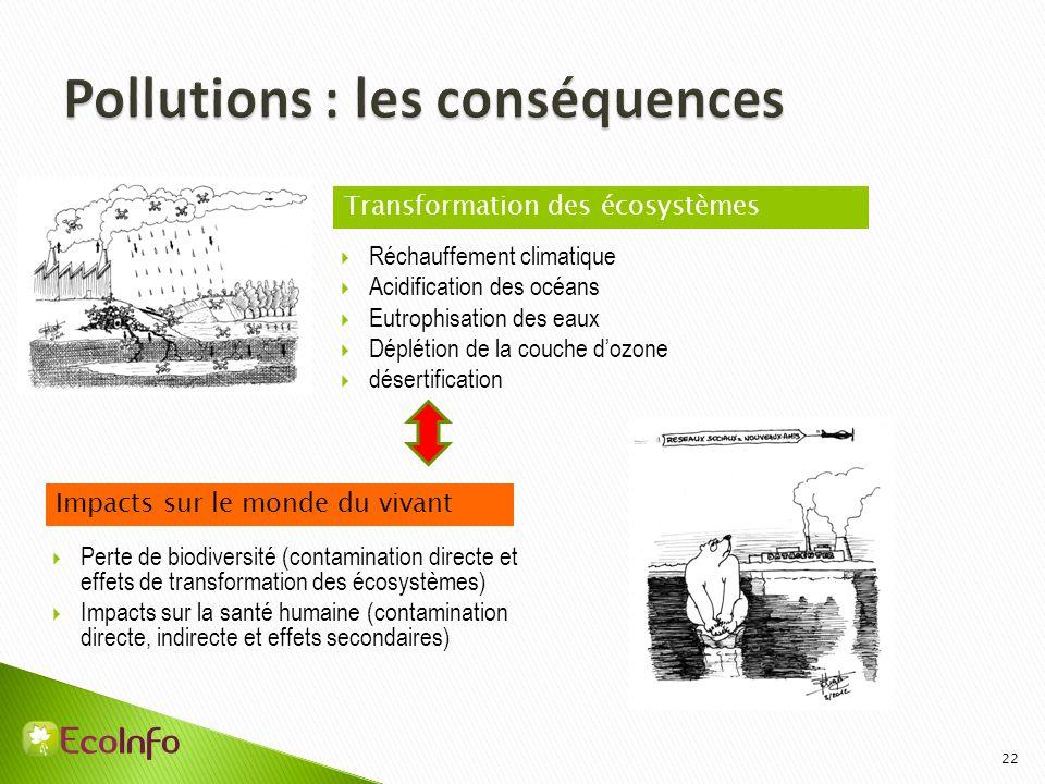 Pollutions : les conséquences