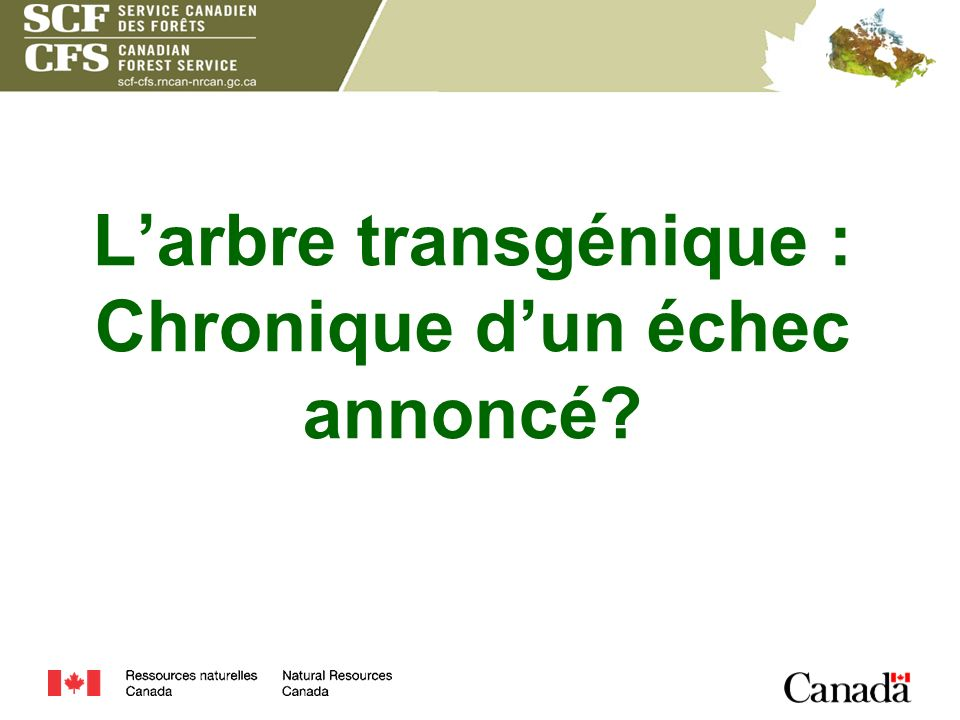 L'arbre transgénique : Chronique d'un échec annoncé