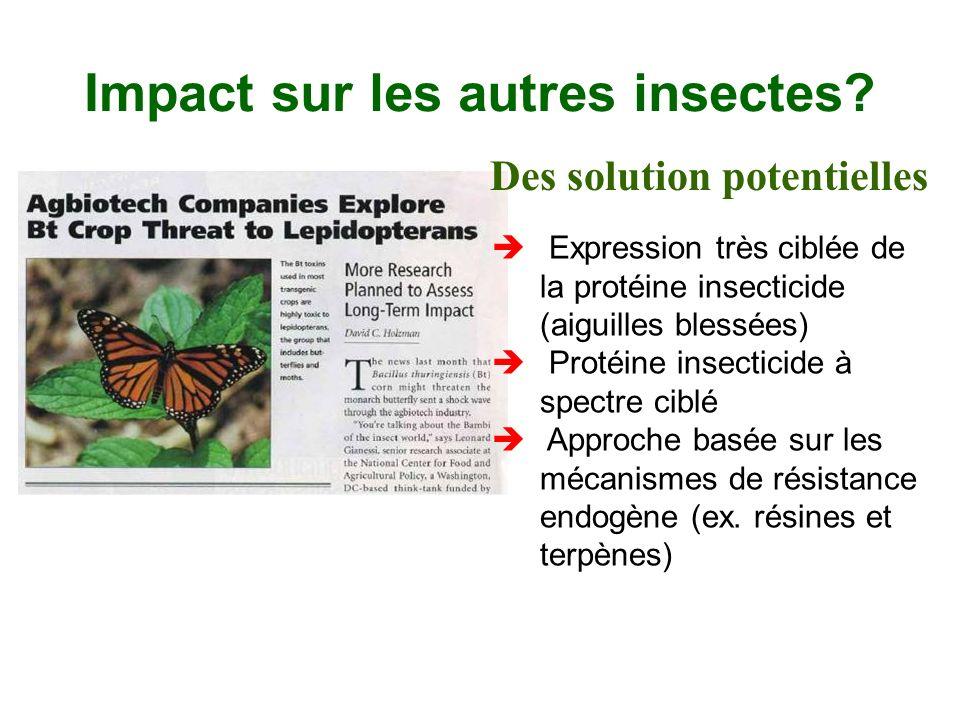 Impact sur les autres insectes