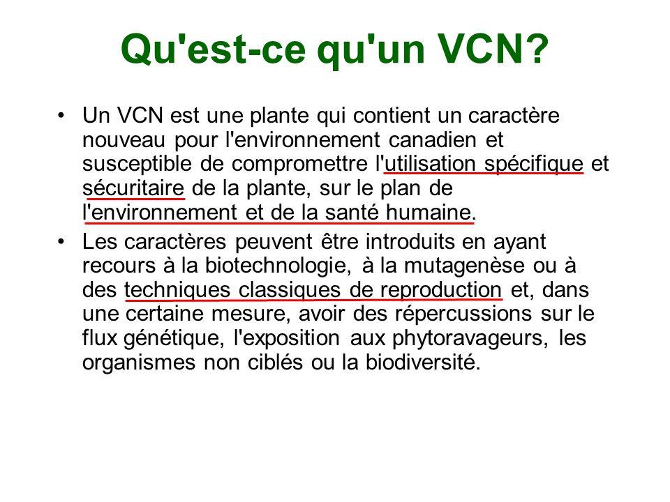 Qu est-ce qu un VCN