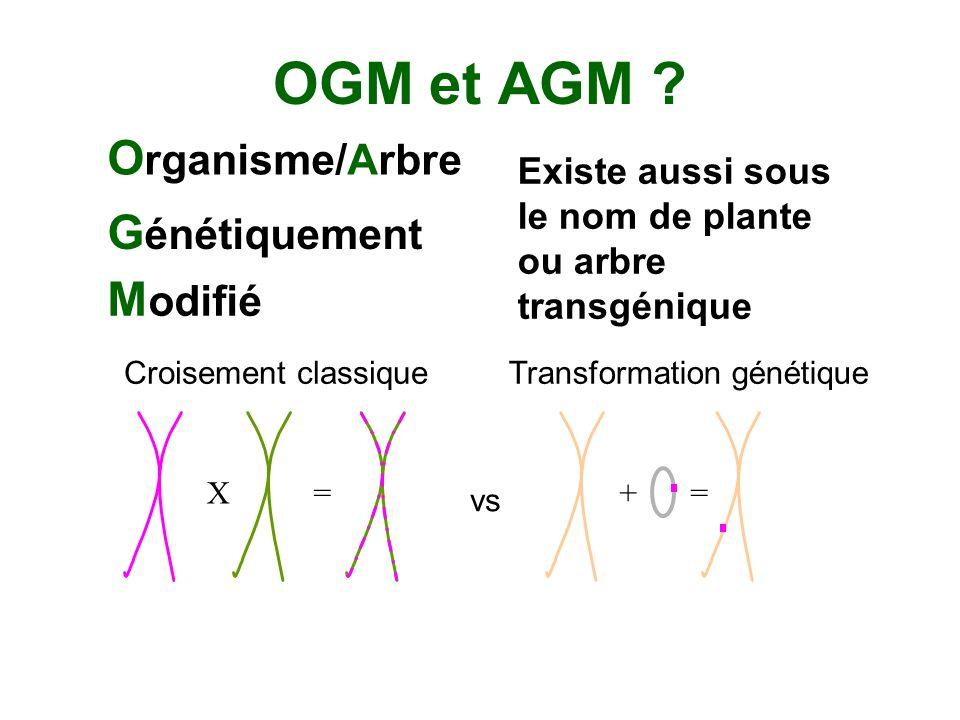 OGM et AGM Organisme/Arbre Génétiquement Modifié