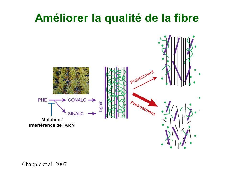 Améliorer la qualité de la fibre