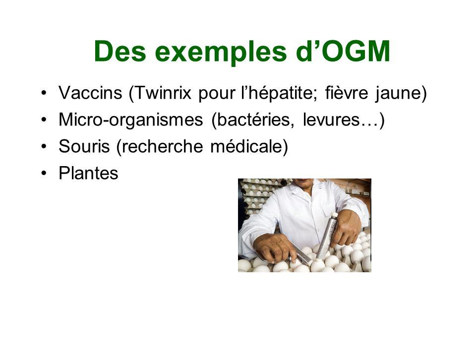 Des exemples d'OGM Vaccins (Twinrix pour l'hépatite; fièvre jaune)