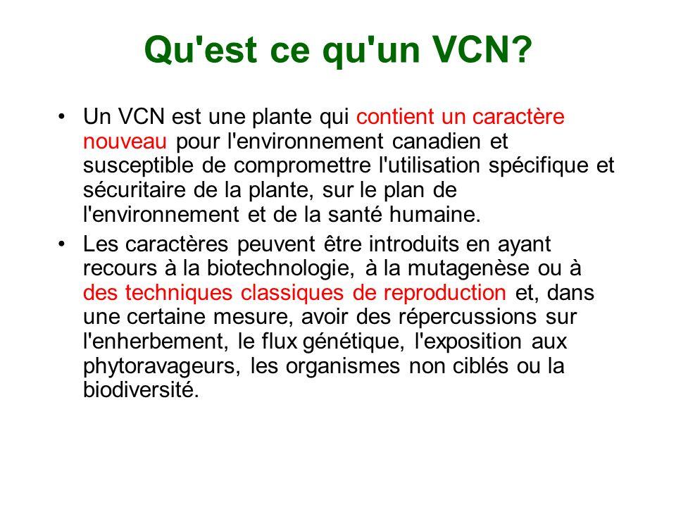 Qu est ce qu un VCN