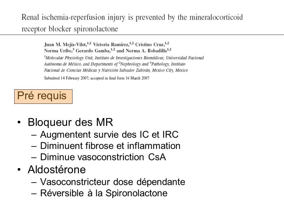 Pré requis Bloqueur des MR Aldostérone Augmentent survie des IC et IRC