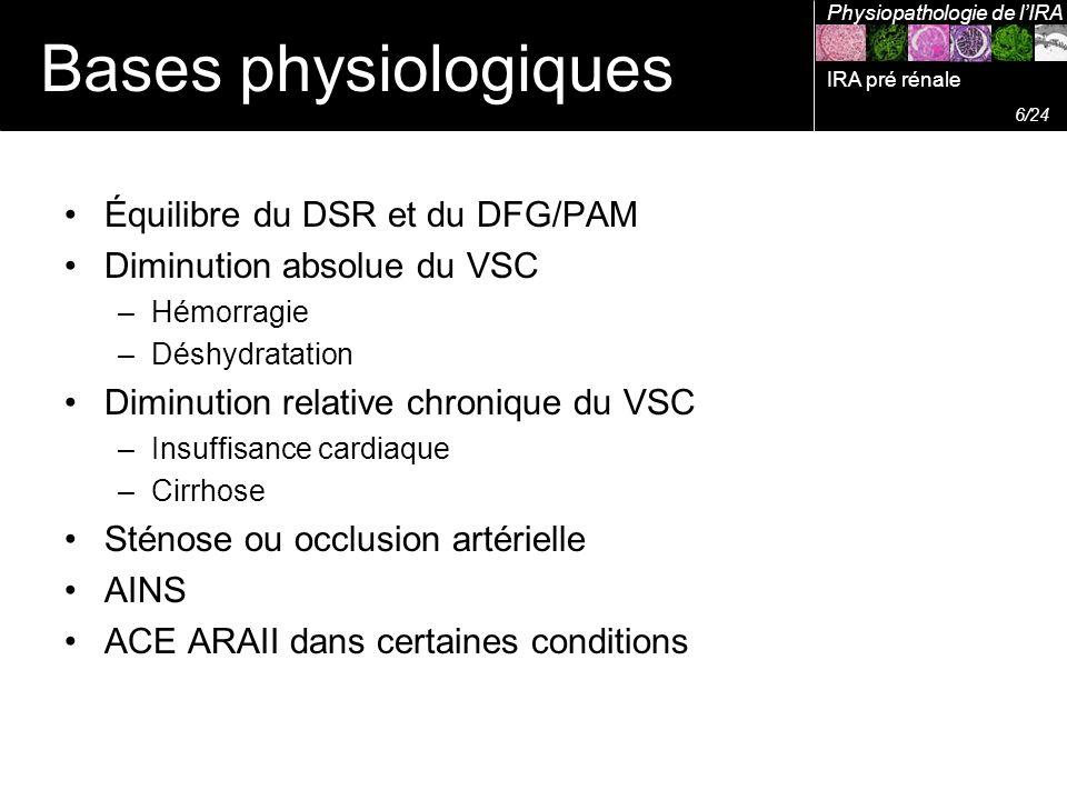 Bases physiologiques Équilibre du DSR et du DFG/PAM