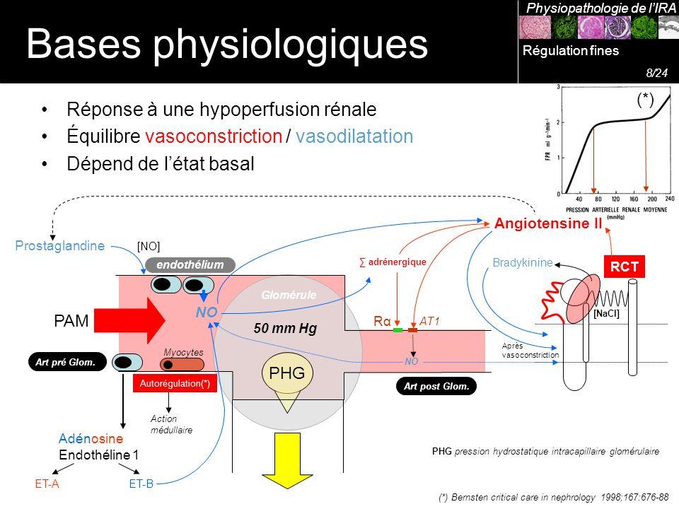 Bases physiologiques Réponse à une hypoperfusion rénale