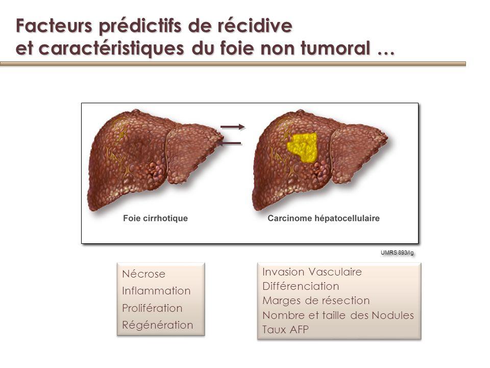Facteurs prédictifs de récidive et caractéristiques du foie non tumoral …