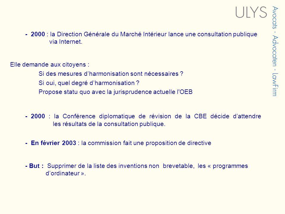 - 2000 : la Direction Générale du Marché Intérieur lance une consultation publique via Internet.