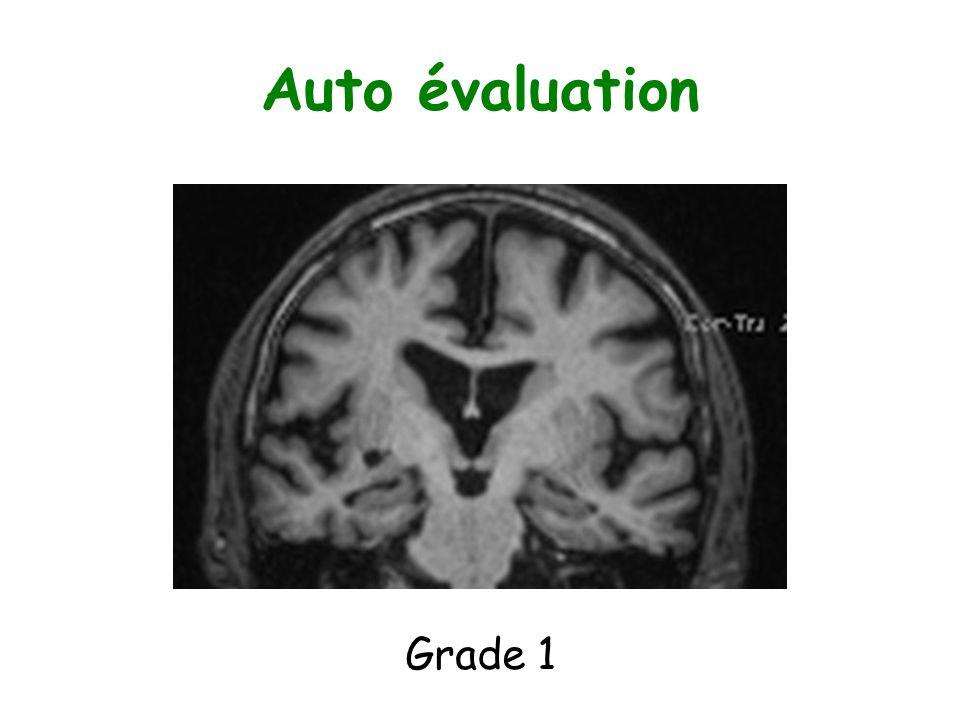 Auto évaluation Grade 1