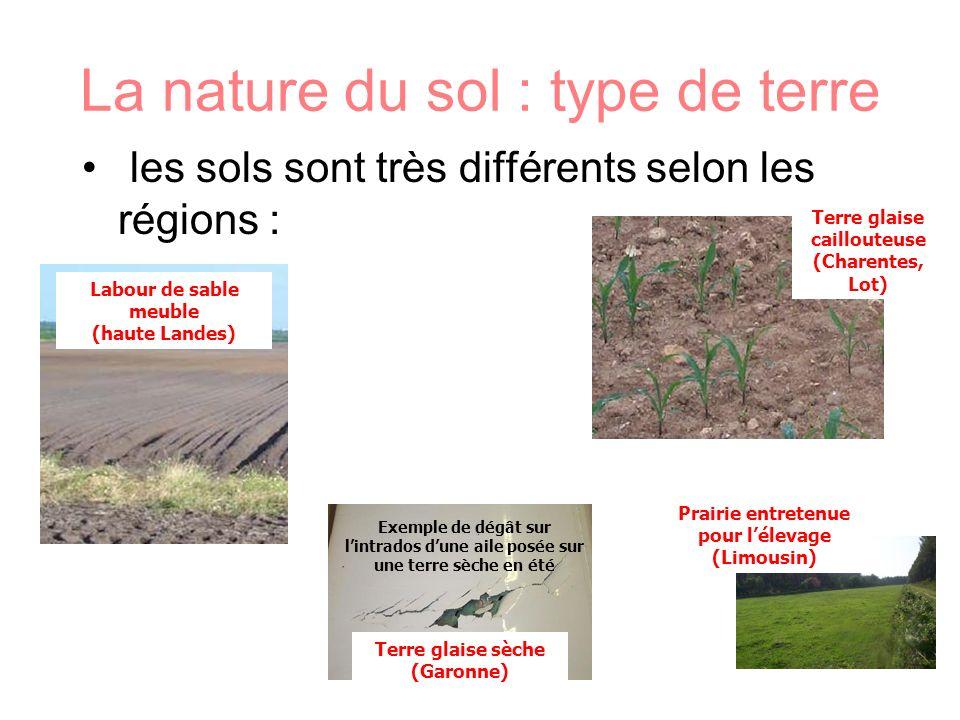 La nature du sol : type de terre