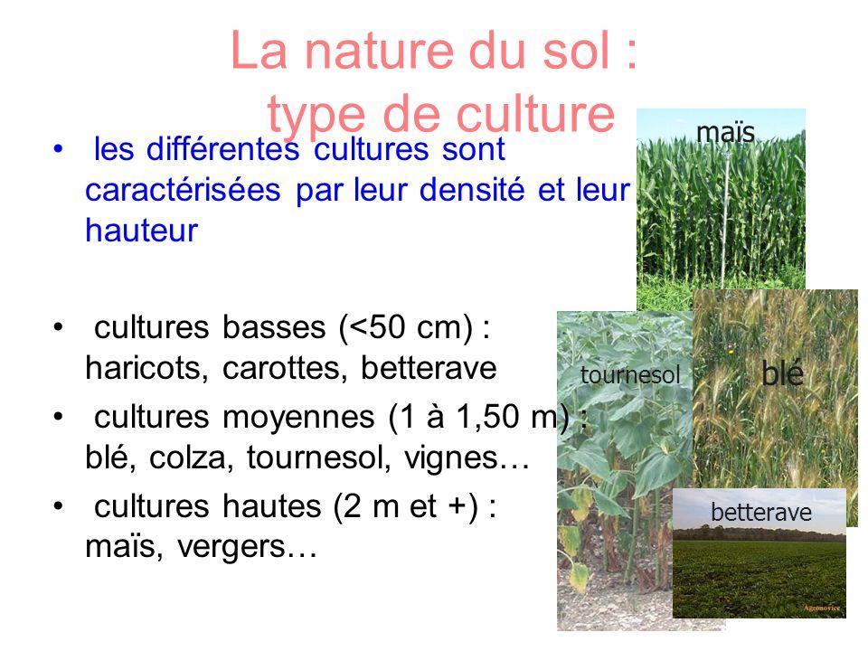 La nature du sol : type de culture