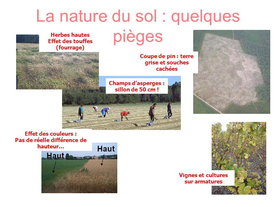 La nature du sol : quelques pièges