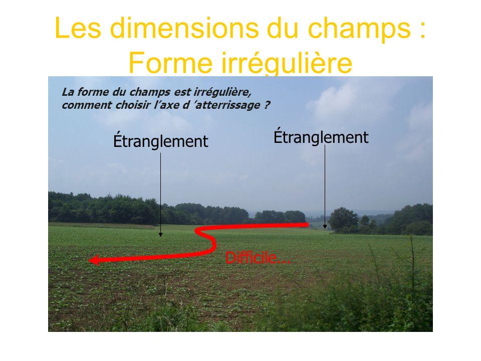 Les dimensions du champs : Forme irrégulière