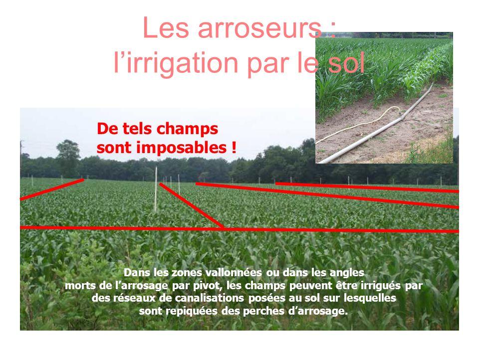 Les arroseurs : l'irrigation par le sol