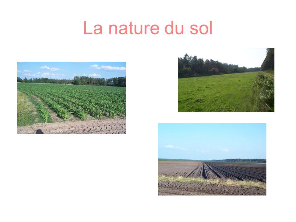 La nature du sol