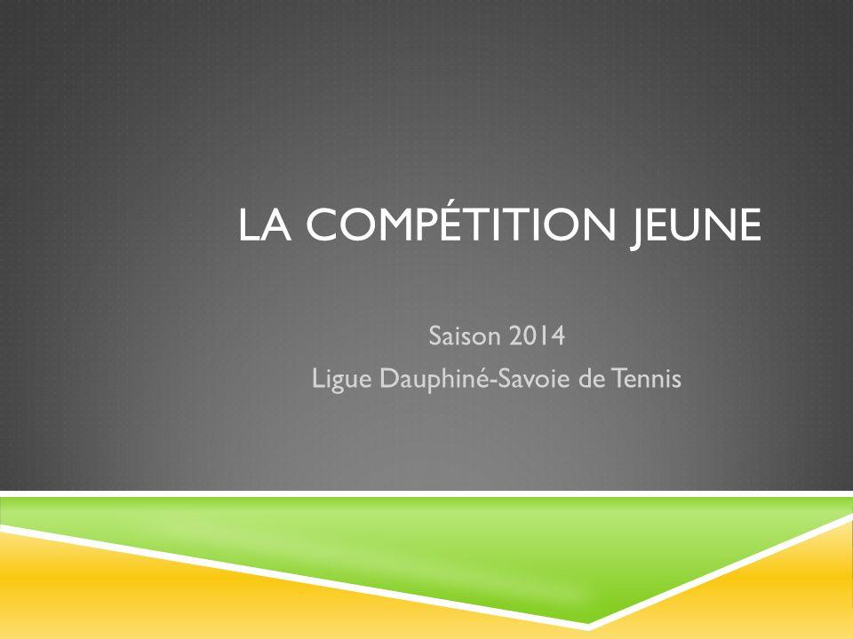 Saison 2014 Ligue Dauphiné-Savoie de Tennis