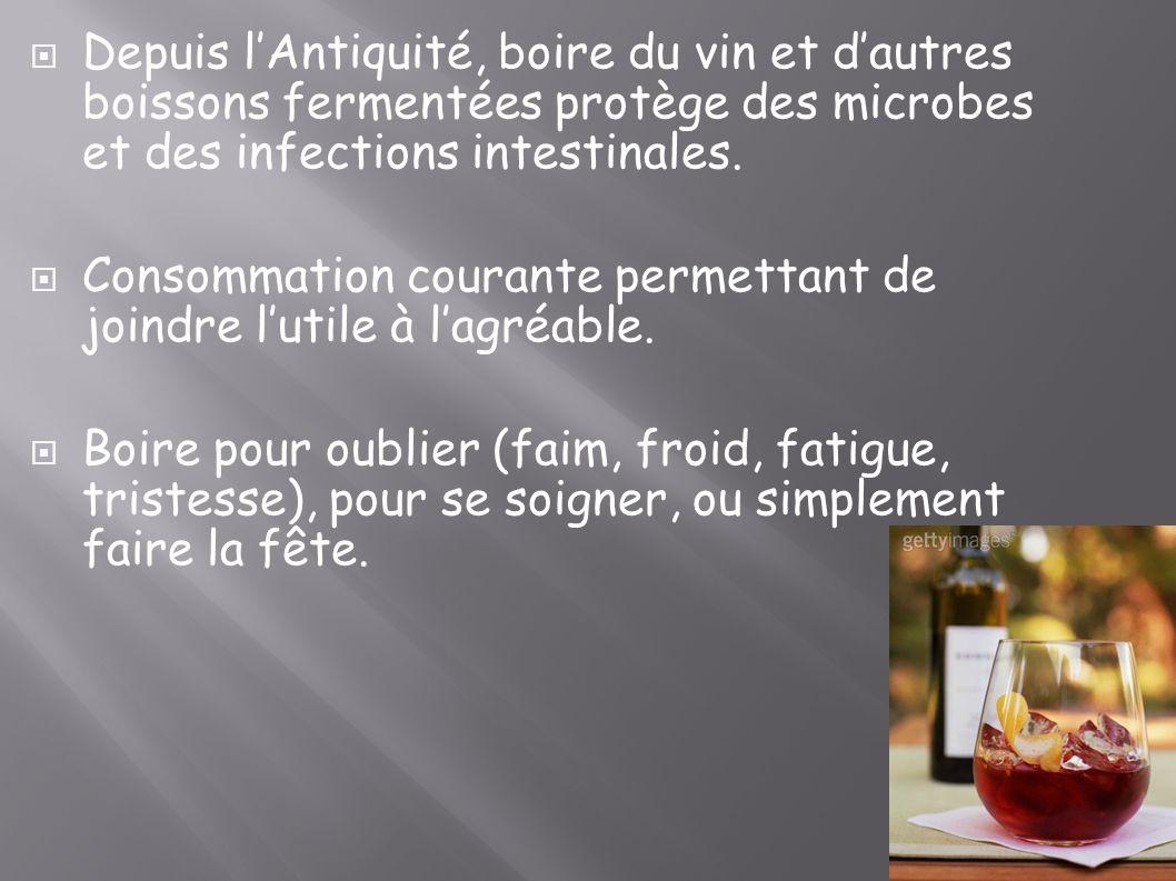 Depuis l'Antiquité, boire du vin et d'autres boissons fermentées protège des microbes et des infections intestinales.