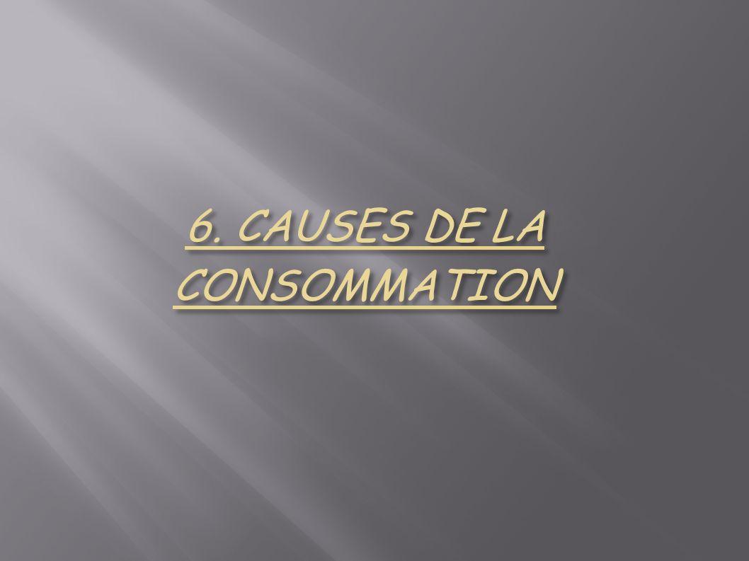 6. CAUSES DE LA CONSOMMATION
