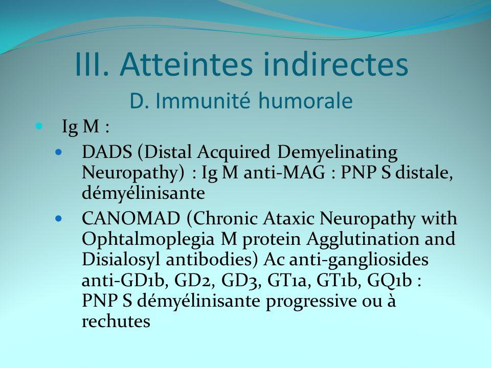 III. Atteintes indirectes D. Immunité humorale