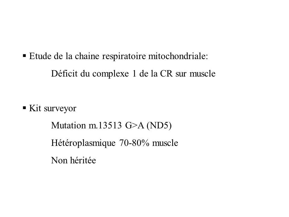 Etude de la chaine respiratoire mitochondriale: