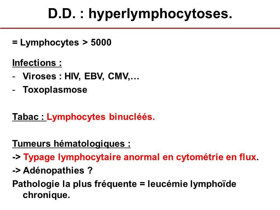 D.D. : hyperlymphocytoses.